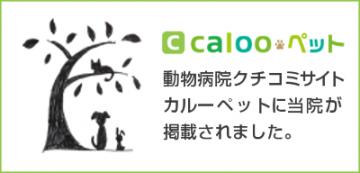 bn_caloopet_120637
